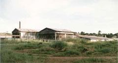 budongo mill